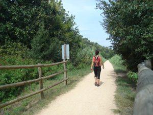 Via verda entre Girona i Quart (ruta del carrilet II: Girona-Sant Feliu de Guíxols). Font: Consorci Vies Verdes de Girona