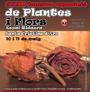 concurs flors i plantes